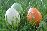 three speckled eggs poster