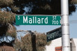 streetsign: mallard street
