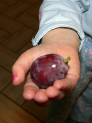 gaint grape little hand