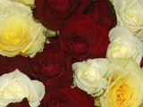 bouquet de roses poster