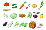 vegetables illustration poster