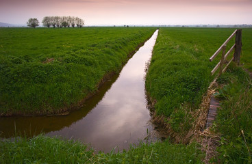 somerset levels in england