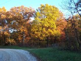 fall colors in missouri