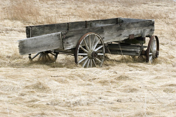 abandoned wagon in field