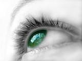 ojo verde iii poster