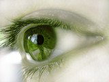 ojo verde ii poster