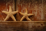 starfish on barn door poster