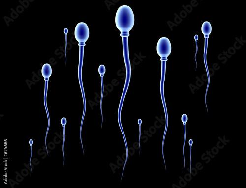 sperma rennen - schwarz