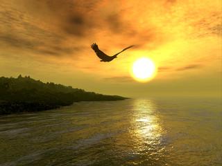 adlerküste