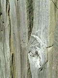 weathered fence poster