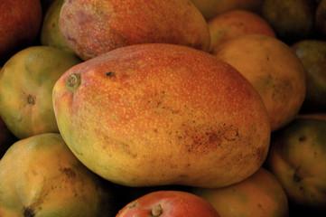 mango, dakar