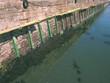 harbour improvements