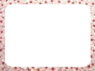 plum flowers background 1