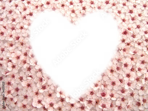 wedding flowers background. plum flowers background 2