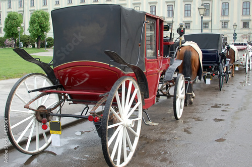 vienna carriages