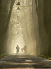 walk to better days