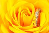 diamond ring in yellow rose poster