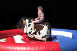 bull riding poster