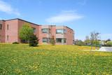 schoolyard with dandelions poster