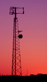 magenta cell phone tower poster