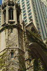chicago contrast
