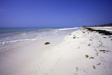 the natural beach