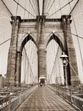the brooklyn bridge - 657816