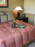 motel room interior poster