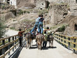 boys riding donkeys in ihlara valley. cappadocia,