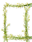 lily of the valley flowers on paper frame border isolated backgr poster
