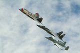 f86, f22, f15, a10 together in flight poster