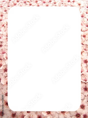 plum flowers frame