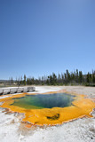 yellowstone - emerald pool hot spring poster