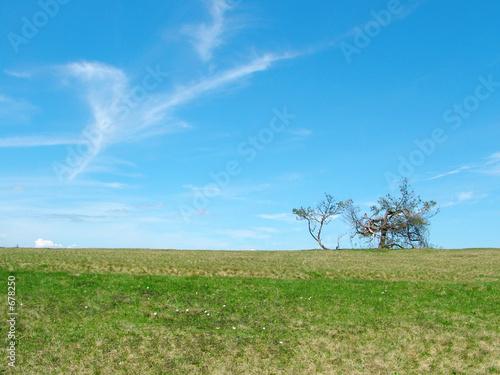 Leinwanddruck Bild horizont