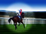 racing on turf poster