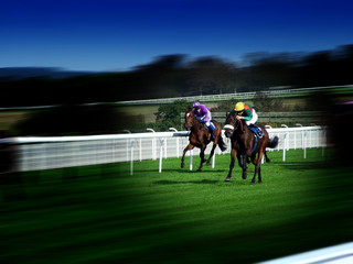 racing on turf