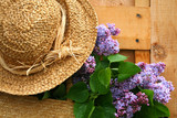 lilacs and old summer hat poster