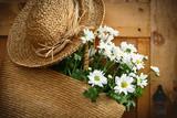 daisies in summer purse/ dark edges poster