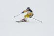 mountain-skier #2