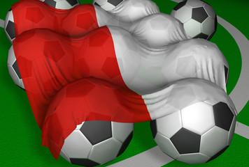3d-rendering poland flag and soccer-balls