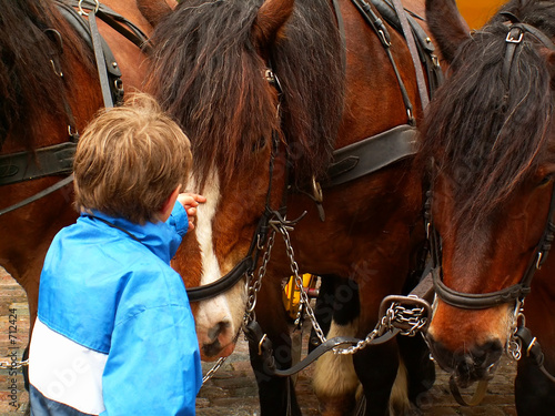 child patting a horse