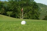 golf ball outside green poster