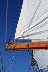 sail and boom, portrait view