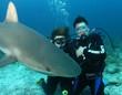 couple with shark