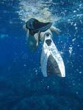 snorkel scuba fins in clear tropical ocean water poster