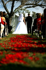 a wedding aisle