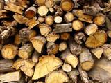 timber 2 poster