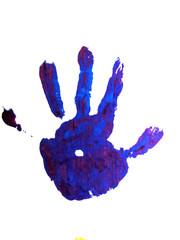 blue habdprint