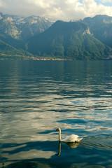 lake leman/geneve