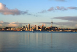 auckland city view poster
